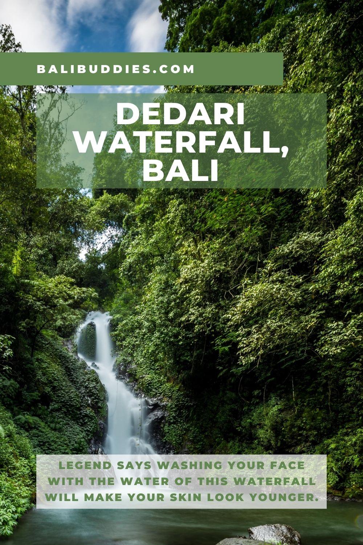 Dedari Waterfall Pin 2