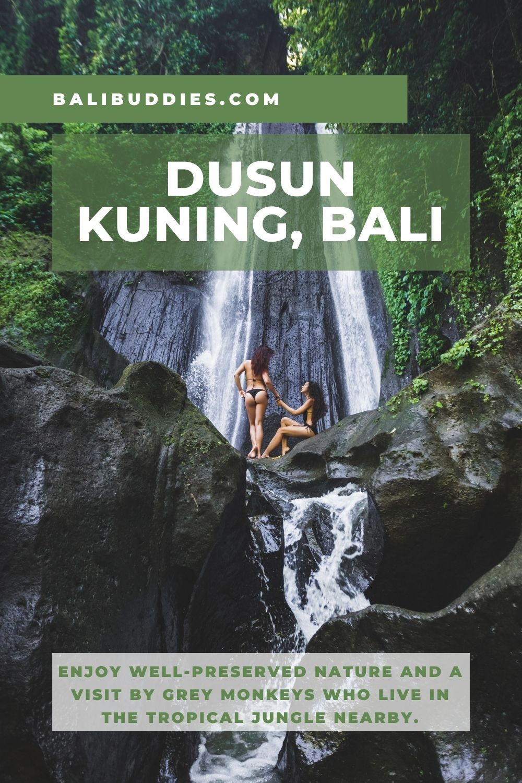 Dusun Kuning Waterfall Pin 2