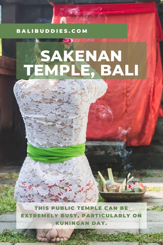 Sakenan Temple Pin 2