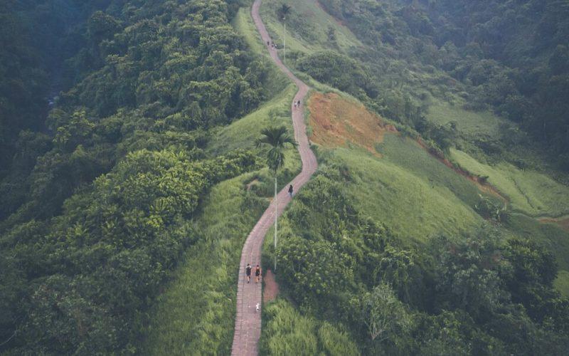 Ridge in Ubud Bali Buddies