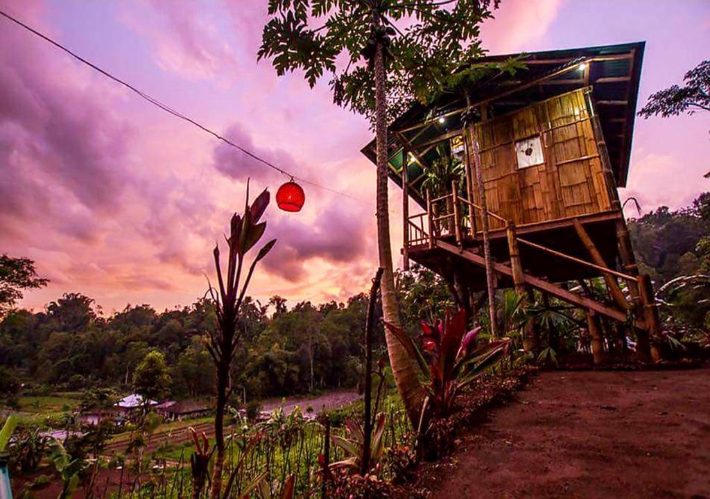 Sunset view from Bali Tree House Pelangi