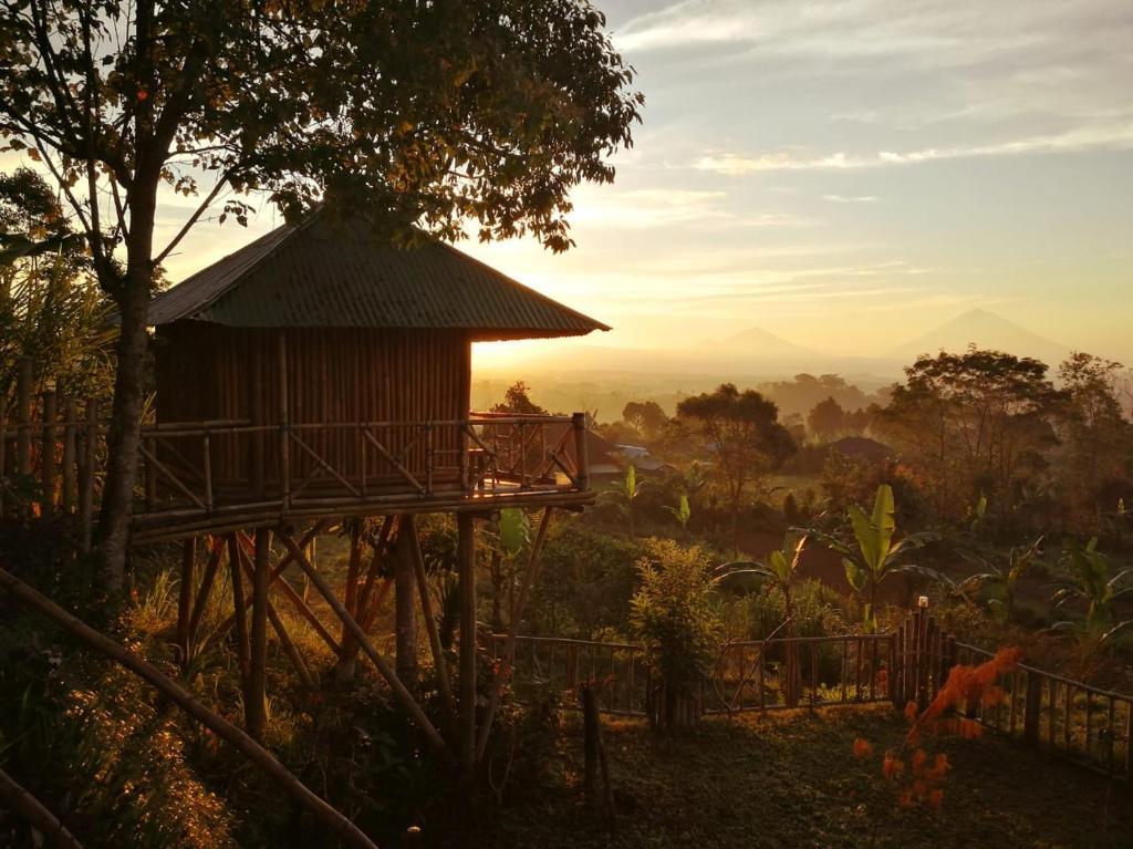 Sunset view of Bali Tree House Pelangi