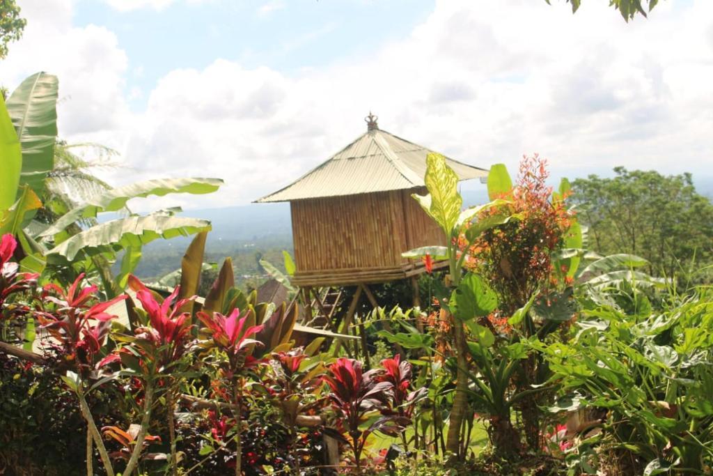 View from Bali Tree House Pelangi