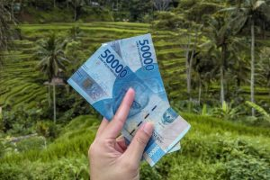 Two fifty thousand notes held up in front of Ubud rice fields