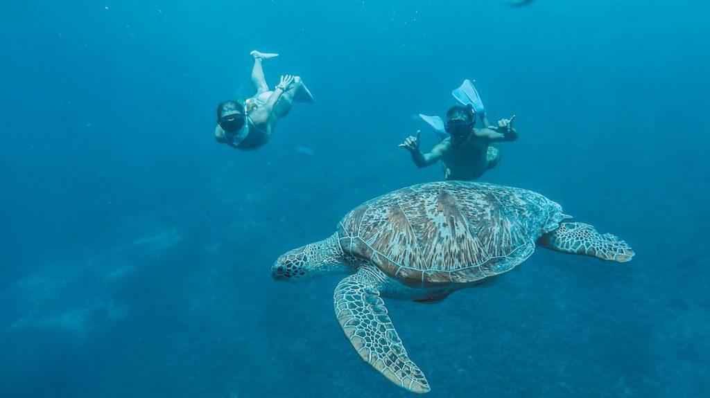 Gili Meno - snorkel 1