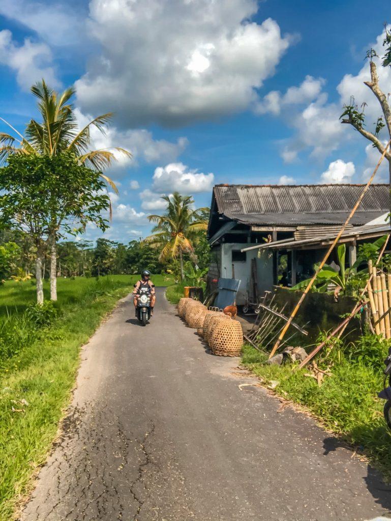Man on a bike exploring the rice fields of Sidemen, East Bali