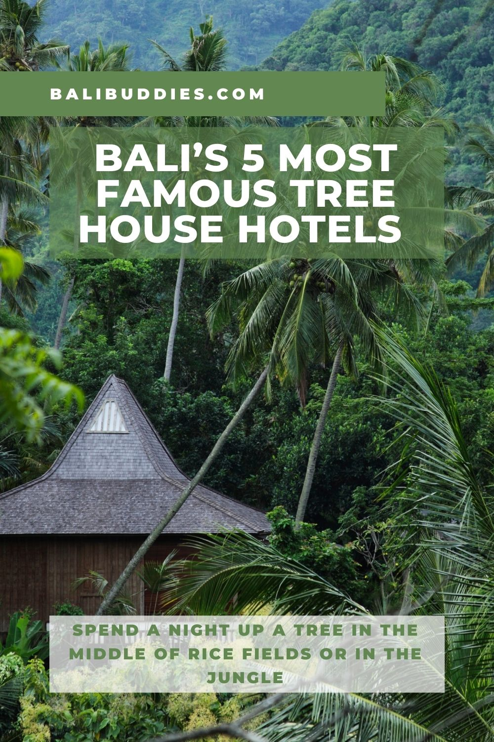 Top Tree House Hotels in Bali